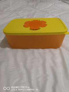 Kotak Tissue