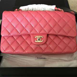 60b2c6ef43fd Chanel 18S Pearly Pink Medium/Large Classic Flap