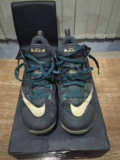 Reprice Nike LeBron James The Twelve Low