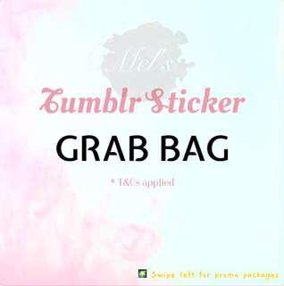 Tumblr Sticker Grab Bag • Luggage Sticker Laptop Sticker