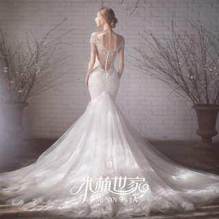 Wedding Collection - Beautiful Embroidered Lace Backless Design Long Tail Wedding Gown