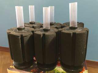 Lelong Sponge Filter BN