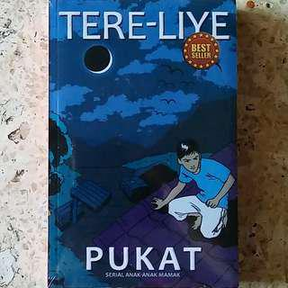 Novel Pukat karya Tere Liye