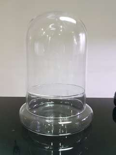 Glass dome, terrarium glass, glass container