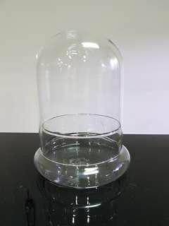 Glass dome, terrarium glass container, clear glass