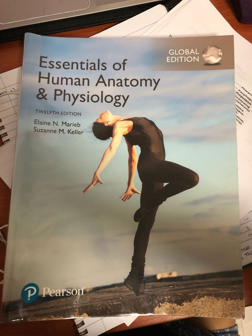 Essentials of Human Anatomy & Physiology, Books & Stationery ...