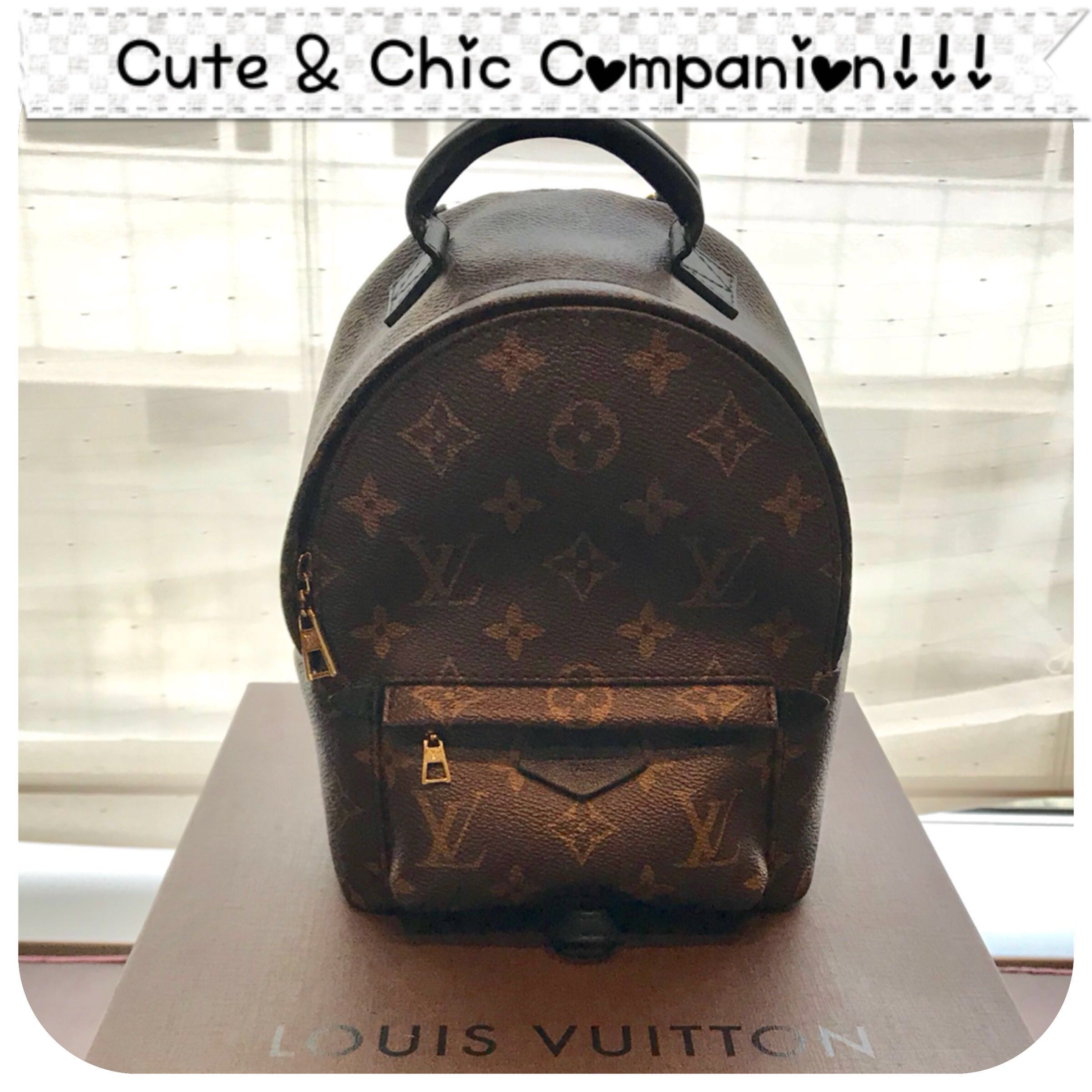 2e579c33b2f1 Louis Vuitton Mini Palm Springs Backpack (SOLD IN A FLASH ...
