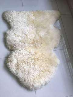 FS: Carpet