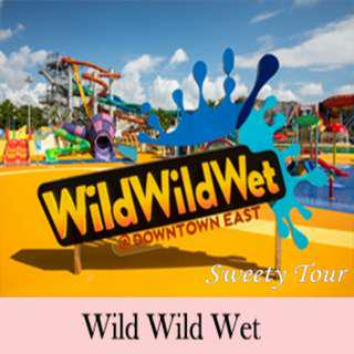 wild wild wet E-ticket