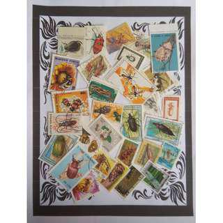 Themed stamps Inserts 30 pcs BM15