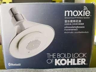 Shower head with wireless speaker