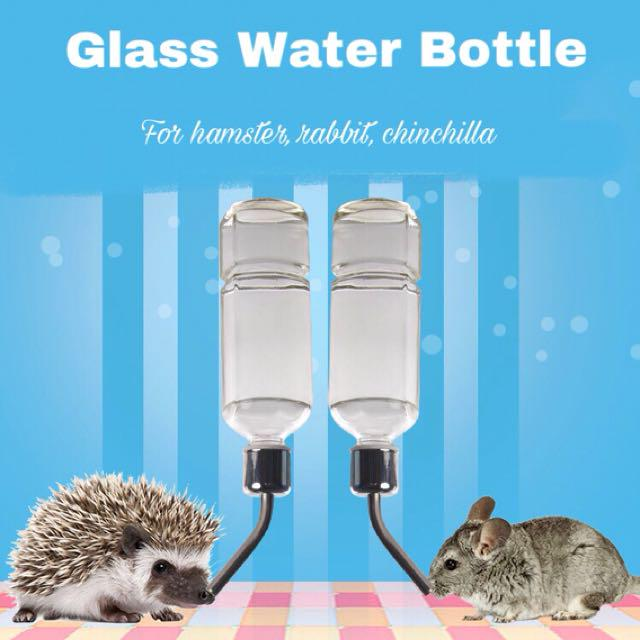 Small animals Glass Water Bottle, Pet Supplies, For Small