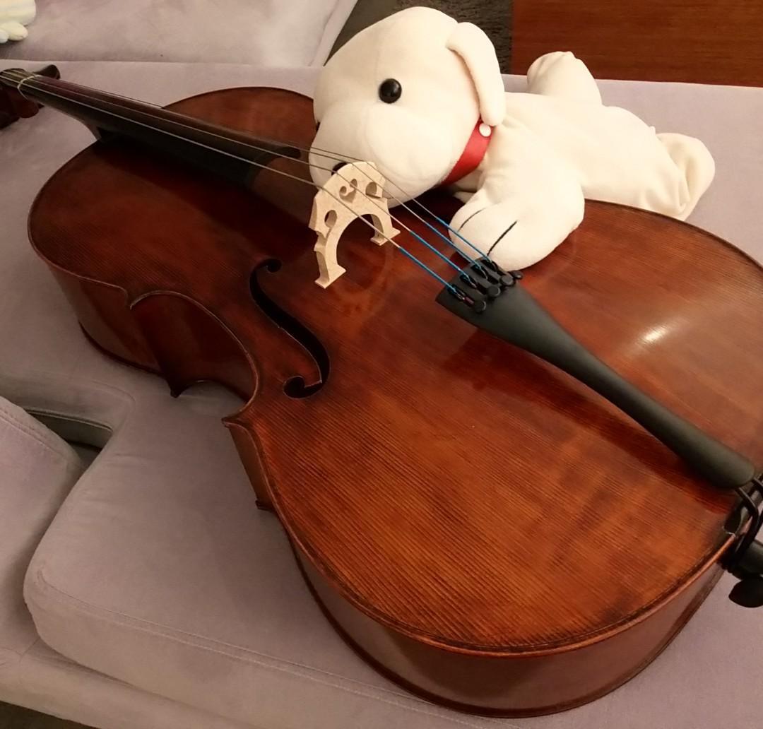 Violin Piano Cello Lessons