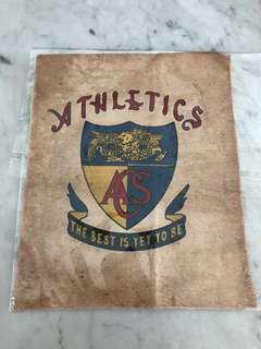 Rare 1886 ACS School Crest 19 cm x 15 cm
