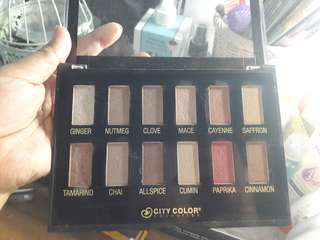 Eye Shadow Pallet City Color