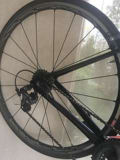 Shimano RS 81-C24 Carbon Clincher wheelset