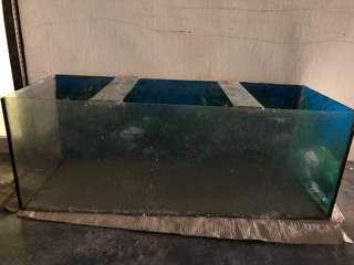 Aquarium besar panjang fish tank