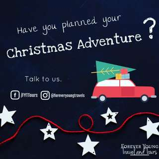 Plan your Christmas Adventure with us