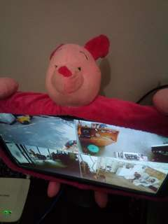 Piglet tv or monitor sleeve
