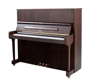 捷克製造 Petrof P125F 鋼琴