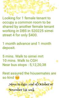 Simei bed space for rent