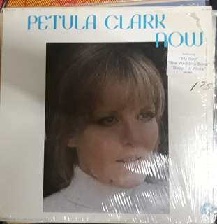LP Record Vinyl Petula Clark - Now VG++/VG++