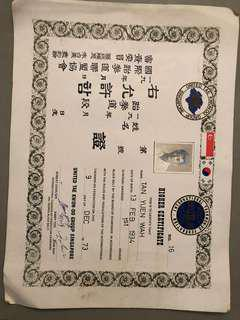 Old 1973 Tae Kwon-Do higher certificate