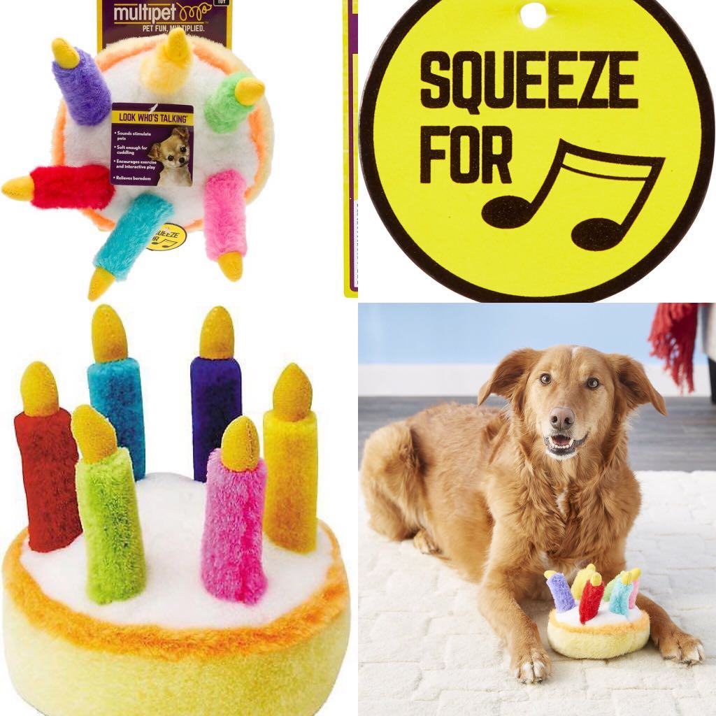 BN Multipet Plush 55 Inch Musical Birthday Cake Dog Toy Pet