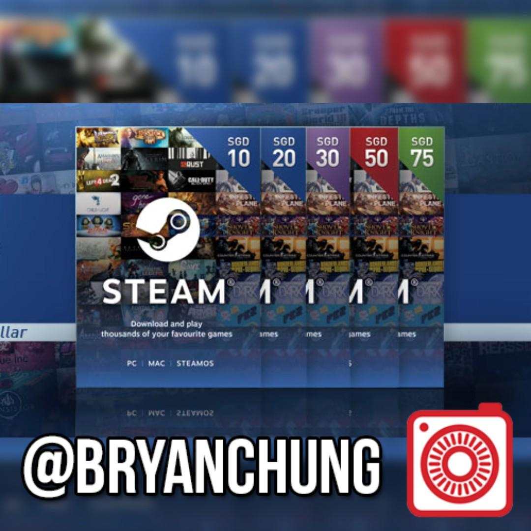 Steam Gift Card Wallet, Toys & Games, Video Gaming, In
