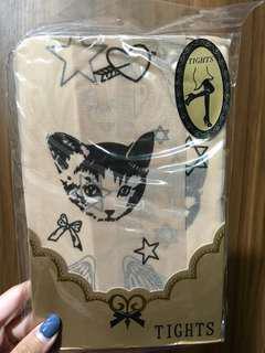 貓咪 透明絲襪