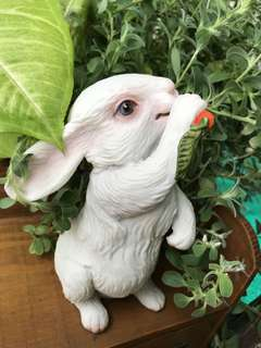"""Bunny resin eating carrot 🥕 H 7""""in,"""