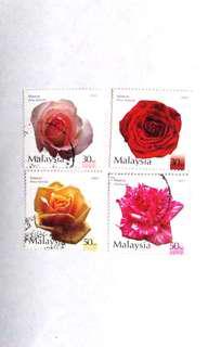 2003 Roses in Malaysia