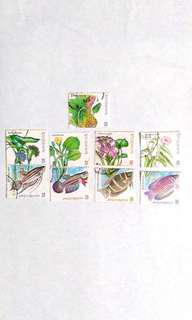 1999 Freshwater Fishes of Malaysia