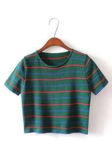 Zara Inspired Korean Knitted Crop Top