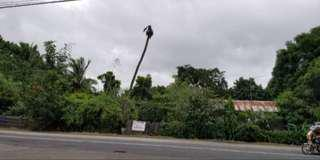 10,000 SQMS PRIME LOT FOR SALE!! PANGASINAN VILLASIS