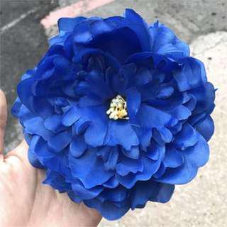 🚚 手掌大的花