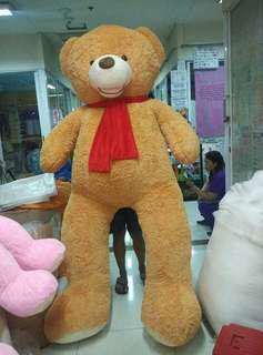 7feet Teddy Bear