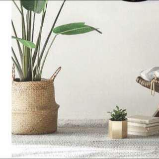 Artificial traveler plant in stock (cashondelivery)