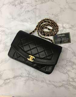 Chanel Diana Flap 9 inch