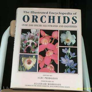 Illustrated Encyclopedia Of Orchids Reference Book