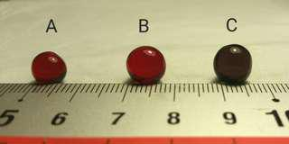 Price Reduced Authentic Red, Purple, Black, Centipede Pearl aka Lipan