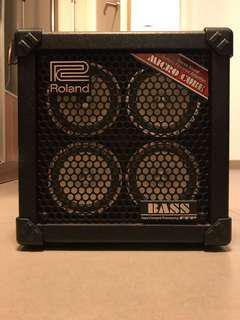 Roland Micro Bass Amp cube
