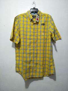 Auth Chaps Polo
