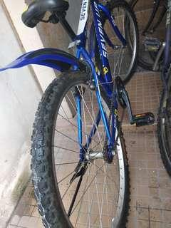 Bicycle MTB