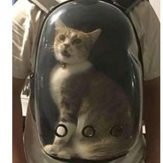 (PO)Transparent Breathable Space Cabin Cat Dog Carrier Shoulder Bag