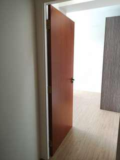 Lightly Used HDB Toilet Door(s) (From toilet)