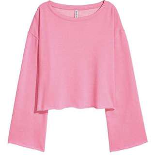 H&M Crop Sweatshirt