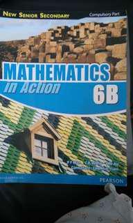 Mathematics in Action 6B