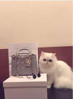 Lady Dior Mini Grey New