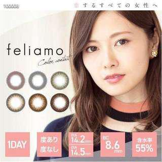 日本 feliamo one day con